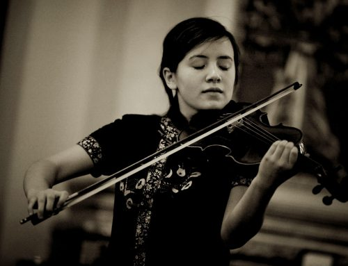 arteMusica-Stiftung